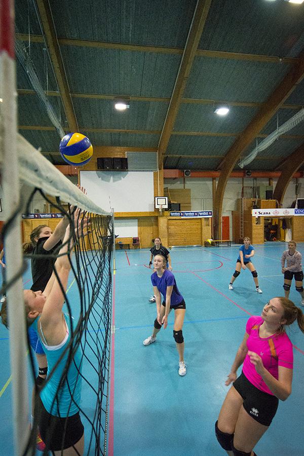 141019oav_peikestokken_volleyball_0410